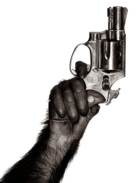 Monkey With Gun, New York City, 1992